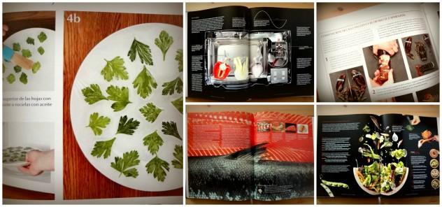 Páginas del libro Modernist Cuisine at Home - by BeaChan