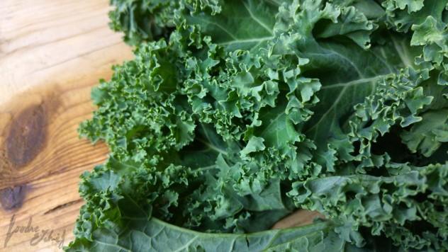 Kale en todo su verde esplendor - by BeaChan